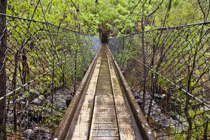 Pont suspendu, Beedelup National Park