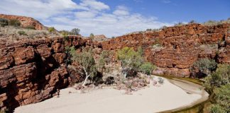 Trephina Gorge, East MacDonnell