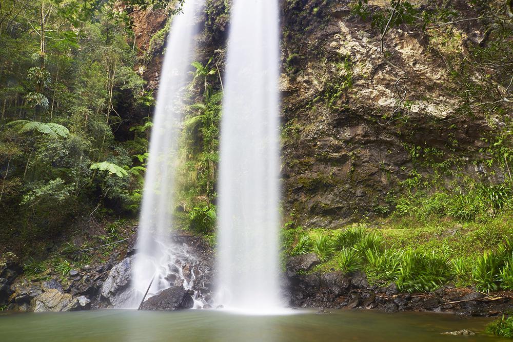 Twin Falls, Springbrook National Park