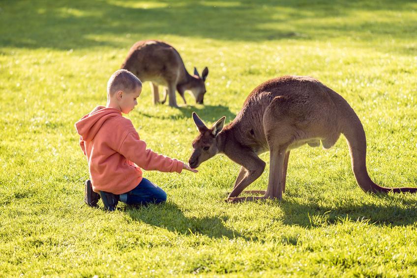 pair australie