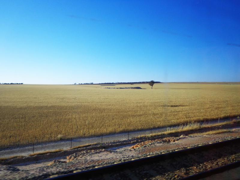 Aux abords de Perth, prairies et champs de cultures se dessinent à l'horizon.