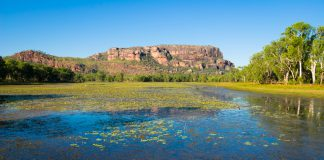 Nourlangie Billabong, Kakadu National Park