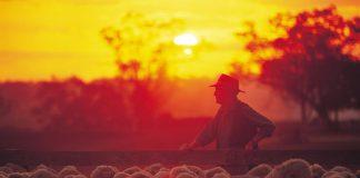 Road train - Outback Australie