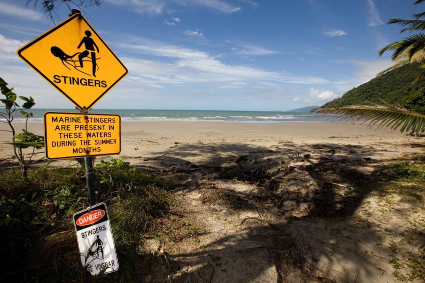 Cape york - Queensland