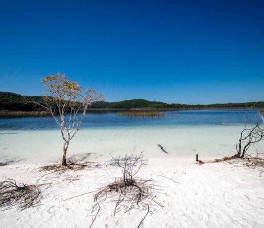 Lake Birrabeen - Fraser Island