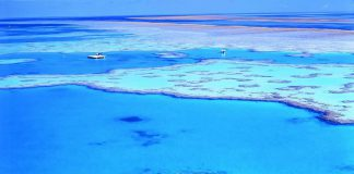 Grande Barrière de Corail - Australie