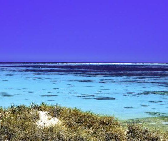 Coral Bay - Ningaloo Reef