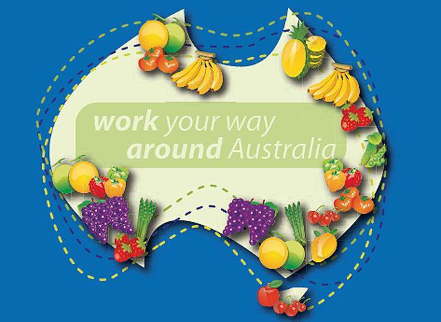 Fruit Picking Australie