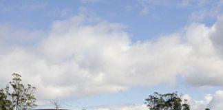 Liffey Valley - Tasmanie