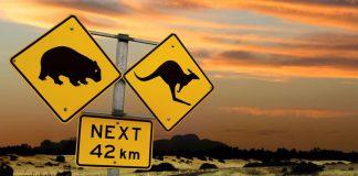 Permis de conduire en Australie