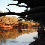 wwoofing australie
