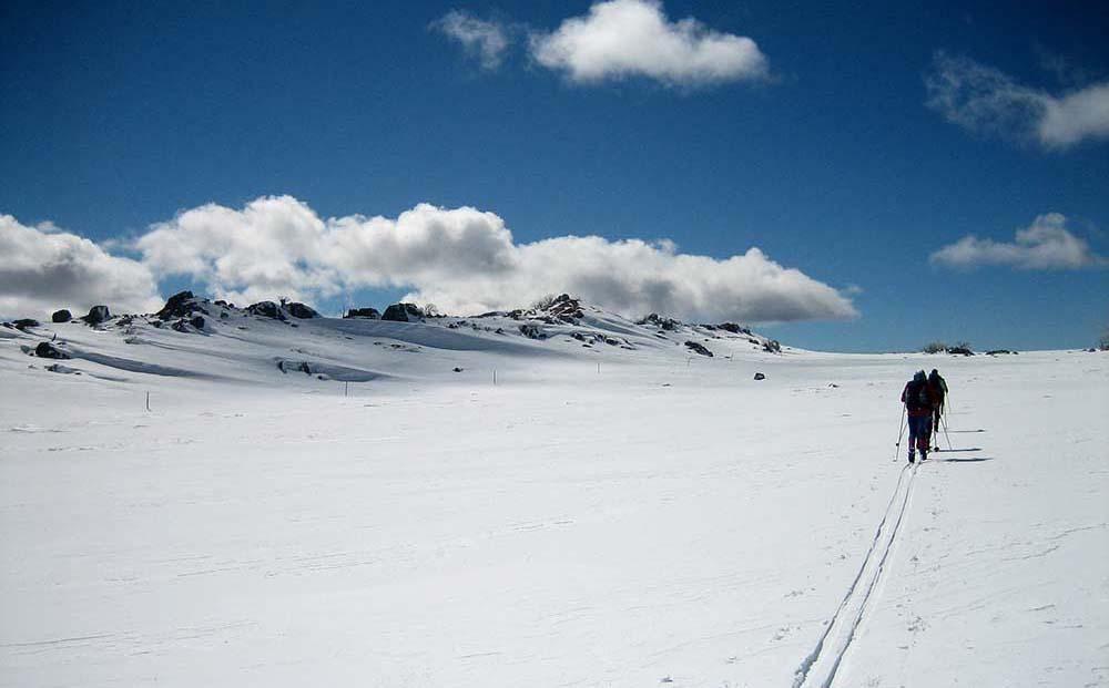 kosciuszko skiing