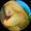 Illustration du profil de ansseau