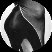 Illustration du profil de imported_Lamouette