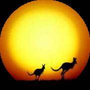 Illustration du profil de Remo