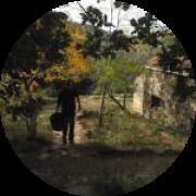 Illustration du profil de Risbo