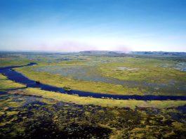 Kakadu National Park et en fond la Terre d'Arnhem