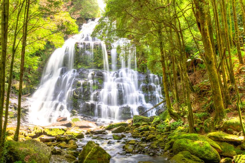 Nelson Falls - Franklin-Gordon Wild Rivers National Park, Australie.