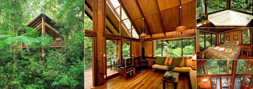 Dormir dans les arbres de la forêt tropicale