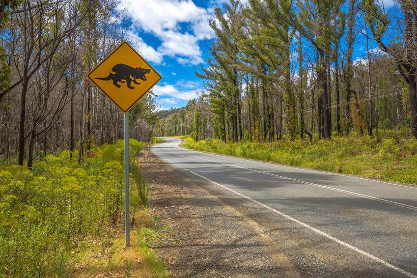 l'Australie à vélo
