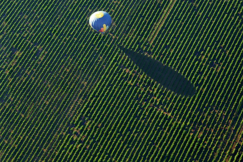 Balade en ballon au dessus des vignobles