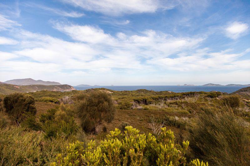 Le bush et la mer au coeur du parc national