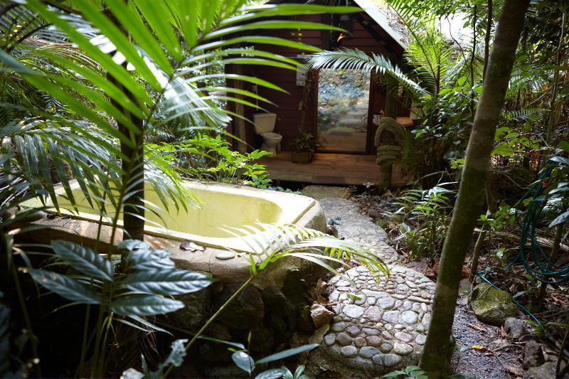 Une petite cabane dans la plus ancienne forêt tropicale du monde !