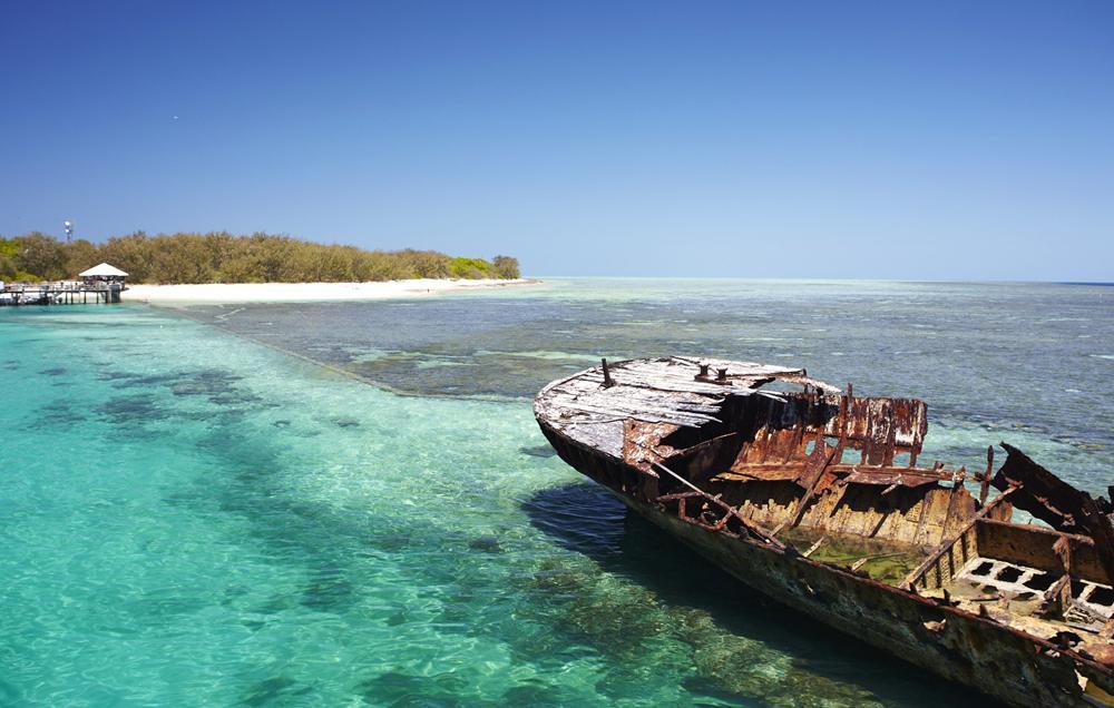 Heron Island, une vingtaine de spots de plongée parmi les meilleurs
