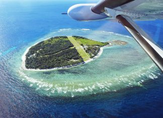 Lady Elliot Island, un paysage de carte postale