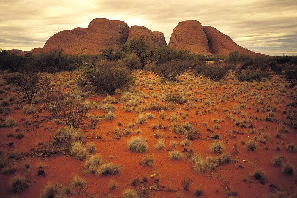 Les Olgas - Uluru National Park