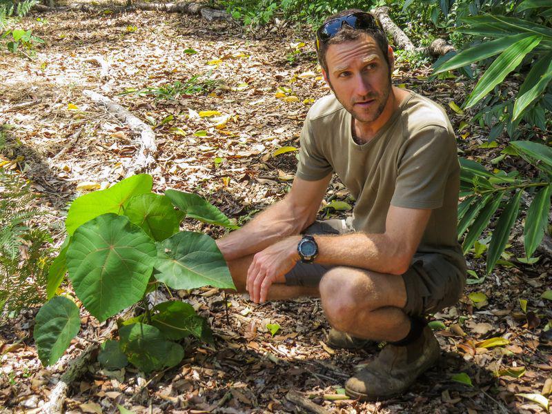 Matthieu au milieu de ses plantes