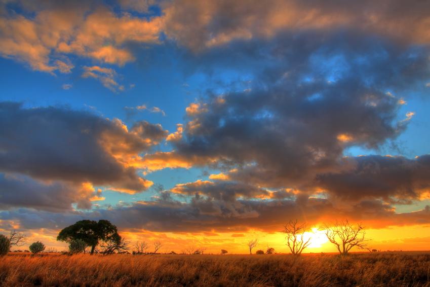 Nullarbor Plain, Australie