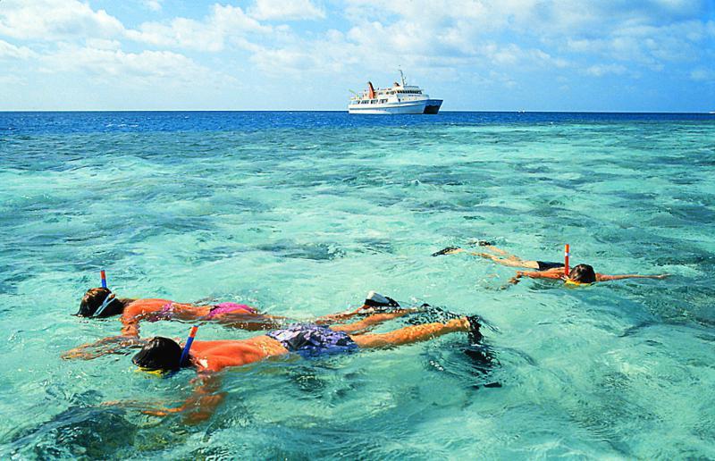 Un simple tuba et des palmes suffisent pour commencer à admirer les coraux