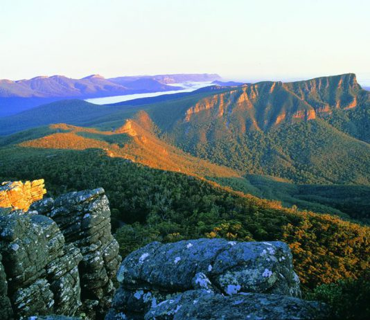 Un des magnifiques parcs nationaux du Victoria