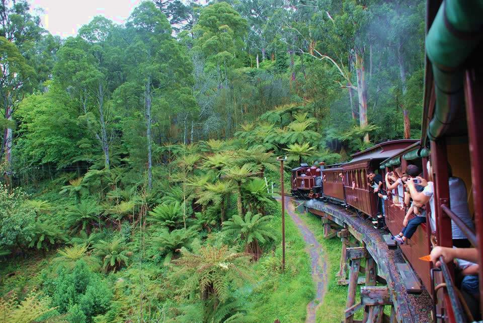 Le Train Puffing Billy pour se rendre dans les Dandenongs © A.Munoz