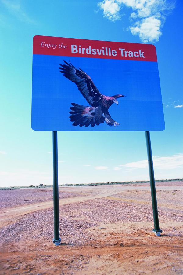 birdsvilletrack