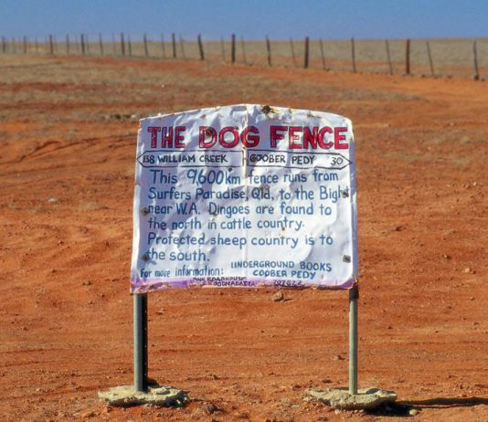 La dog fence