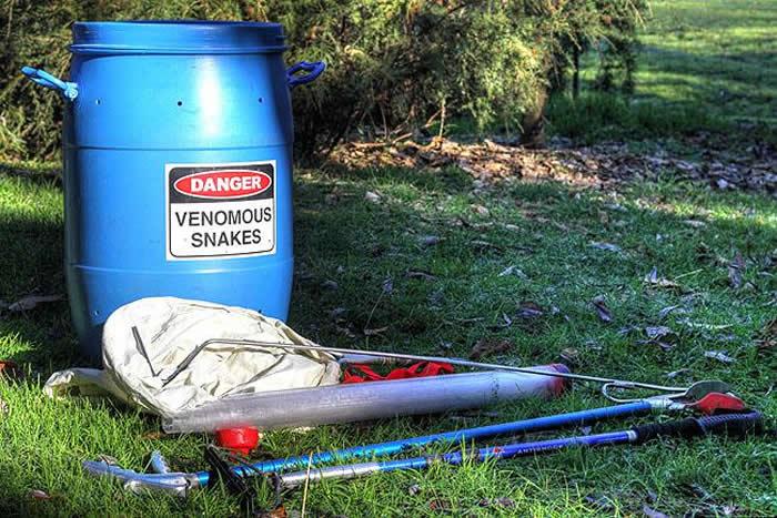 Attrapeuse de serpents