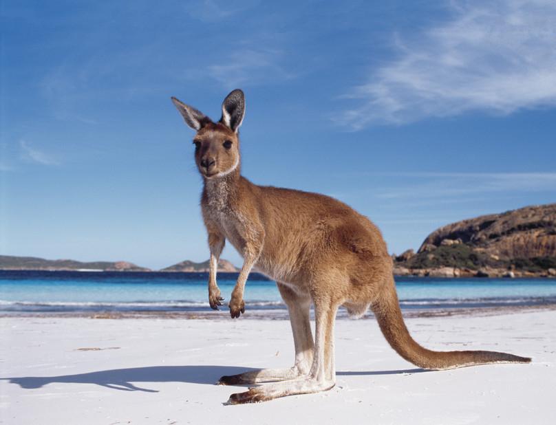 Carte Australie Esperance.Esperance Au Cœur Des Plages Idylliques Du Sud Ouest Australien