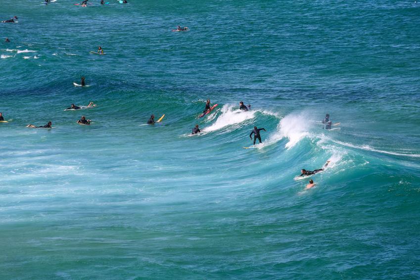 Surfeurs a Bondi beach