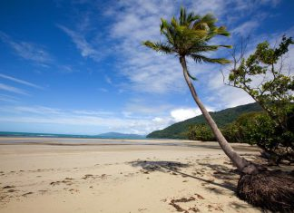 Cape york - Queensland