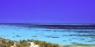 Ningaloo Reef