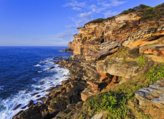 Royal National park Sydney