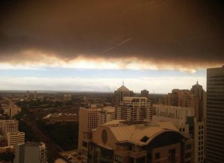 Incendies Sydney
