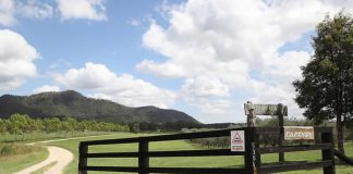 Travail à la ferme en Australie