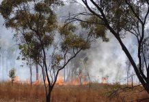 Incendies aborigènes