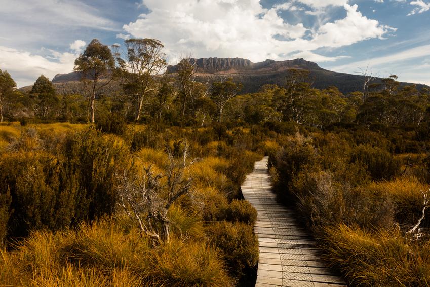 Mount Olympus - Overland Track - Tasmanie