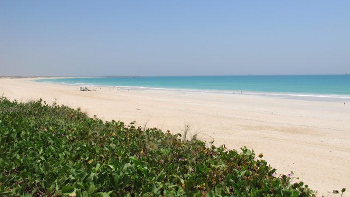 Requin Cable Beach