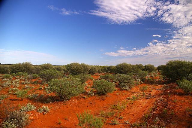 Outback pour un site de déchets nuclèaires