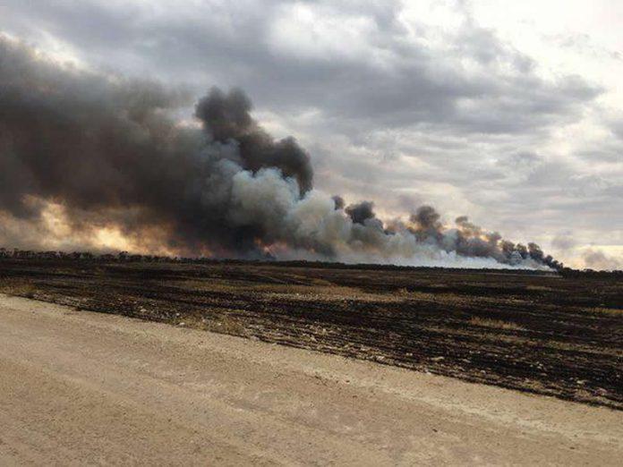 Mort de trois backpackers dans un incendie